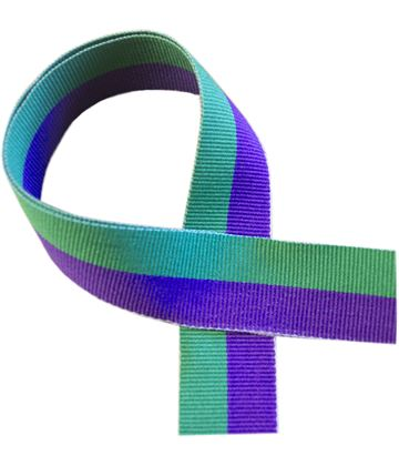 "Green and Purple Medal Ribbon 76cm (30"")"
