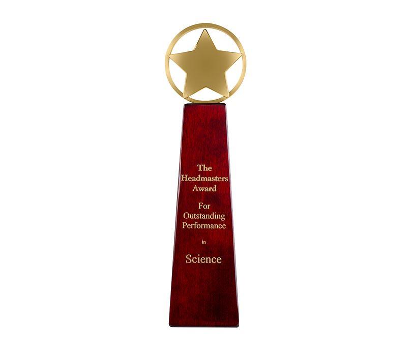 """Gold Metal Star Presentation Award on Rosewood Finished Base 26cm (10.25"""")"""