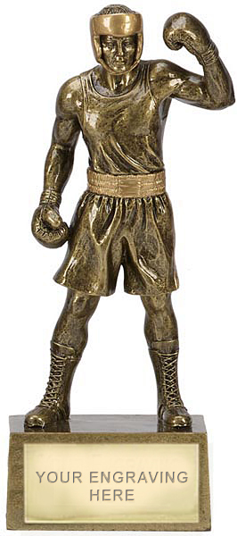 "Gold Resin Celebration Boxing Trophy 24cm (9.5"")"