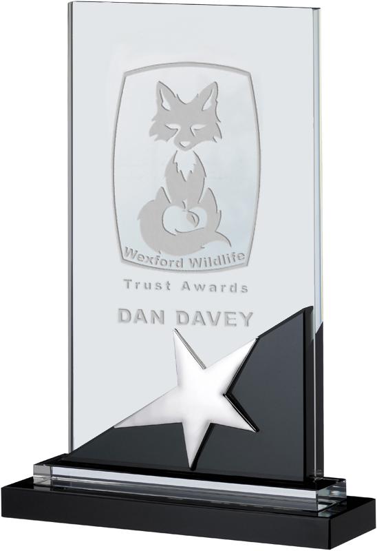 "Optical Crystal & Black Glass Plaque Star Award 20cm (7.75"")"