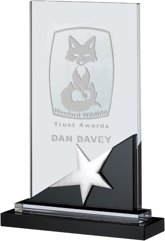 "Optical Crystal & Black Glass Plaque Star Award 20cm (7.75"")"