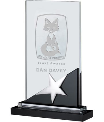 "Optical Crystal & Black Glass Plaque Star Award 24cm (9.5"")"