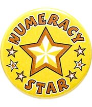 "Numeracy Star Pin Badge 25mm (1"")"