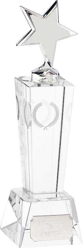 "Unite Silver Star Award 22cm (8.75"")"