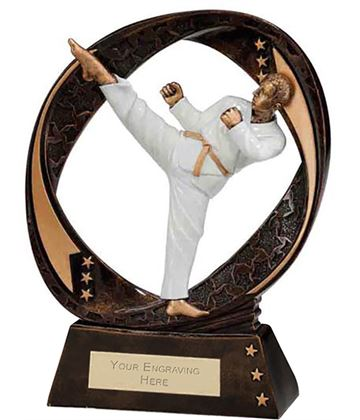 "Typhoon Martial Arts Trophy 17cm (6.75"")"