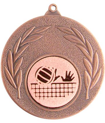 """Bronze Leaf Medal with 1"""" Volleyball Centre Disc 50mm (2"""")"""