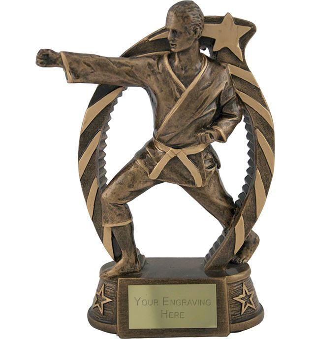 "Antique Gold Star Trim Martial Arts Trophy 19cm (7.5"")"