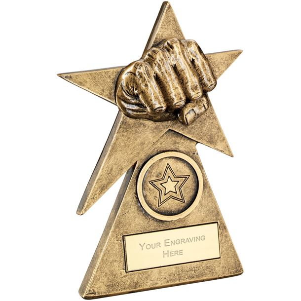 """Martial Arts Star On Pyramid Base Trophy 12.5cm (5"""")"""