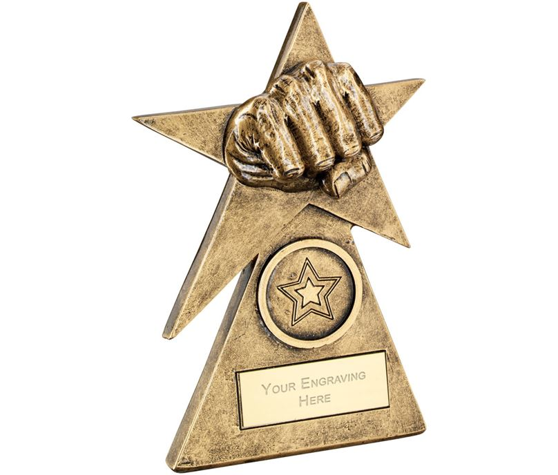 "Martial Arts Star On Pyramid Base Trophy 15cm (6"")"