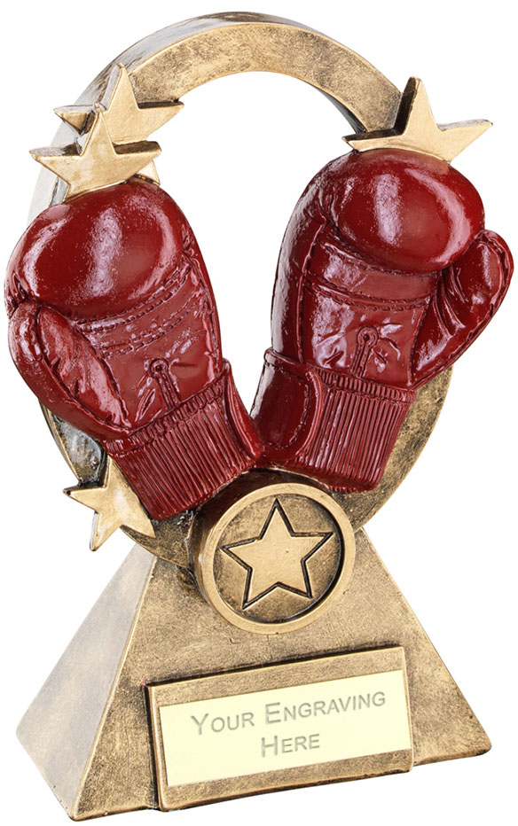 "Boxing Oval Stars Series Trophy 18.5cm (7.25"")"