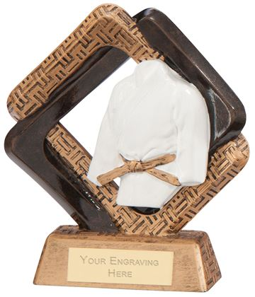 "Sporting Unity Martial Arts Award 16.5cm (6.5"")"