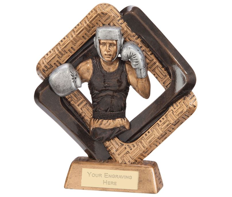 "Sporting Unity Boxing Award 19.5cm (7.75"")"
