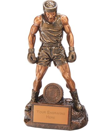 "Ultimate Boxing Award 26.5cm (10.5"")"