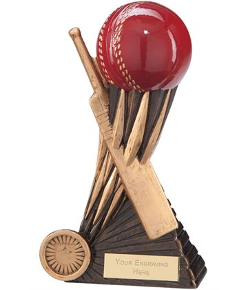 "Atomic Cricket Award 20cm (8"")"