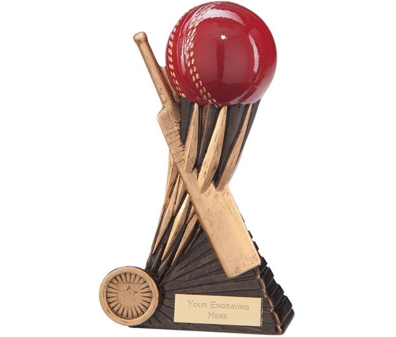 "Atomic Cricket Award 18cm (7"")"