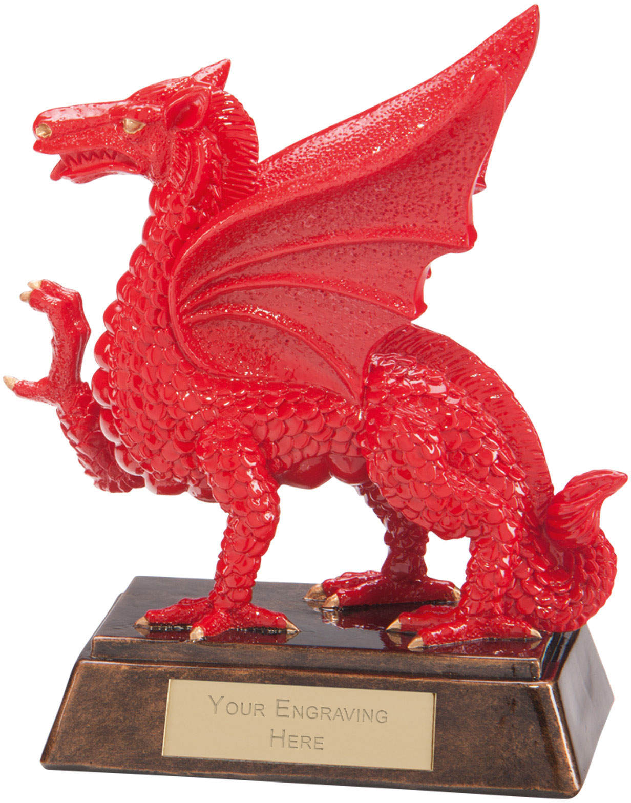 "Celtic Dragon Award 17.5cm (6.75"")"