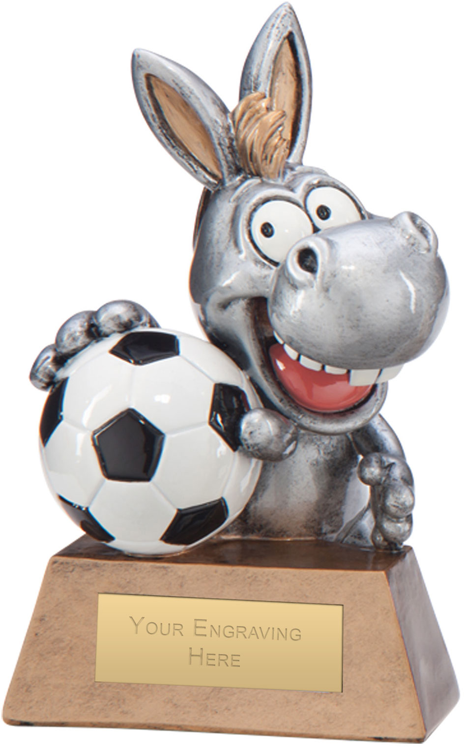 "What A Donkey! Football Award 13cm (5"")"