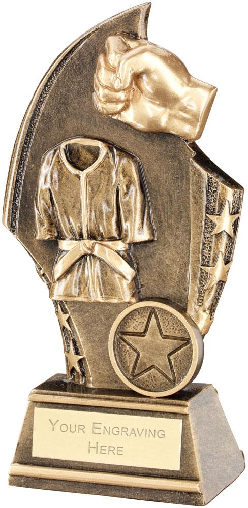 "Martial Arts Curved Plaque Trophy 17cm (6.75"")"