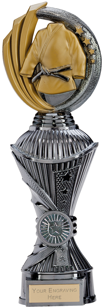 "Renegade MartialArts Heavyweight Trophy Gunmetal & Gold 30cm (11.75"")"