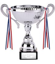 """Turin Silver Cup 13.5cm (5.25"""")"""