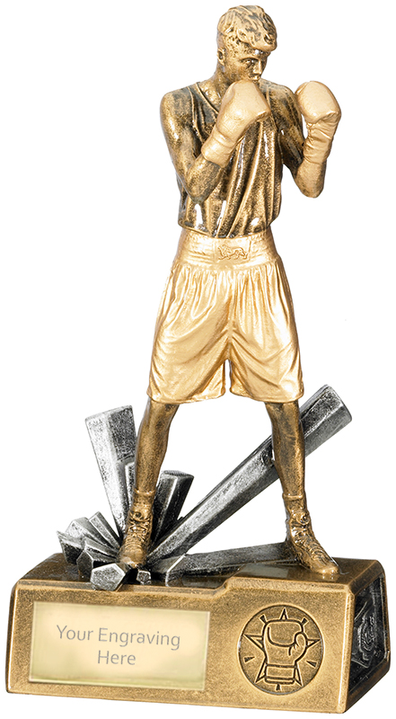 "Male Boxer Krypton Trophy 21.5cm (8.5"")"