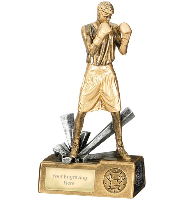 "Male Boxer Krypton Trophy 21.5cm (8.5"")"