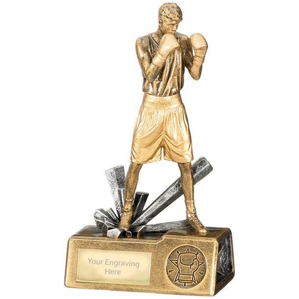 "Male Boxer Krypton Trophy 18.5cm (7.25"")"