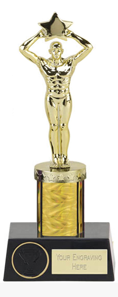 "Gold Star Achievement Column Statue Award 23cm (9"")"