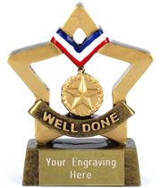 "Mini Stars Well Done Award 8.5cm (3.25"")"