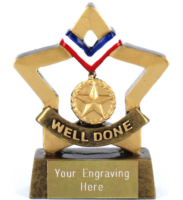 "Mini Stars Well Done Award 8.5cm (3.25"")"