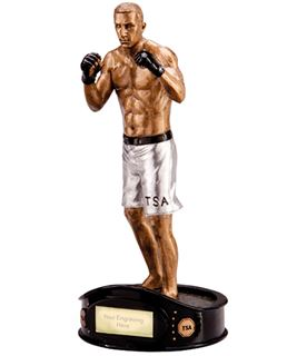 """Gold & Silver Resin Ultimate Fighter MMA Figure Trophy 22.5cm (8.75"""")"""