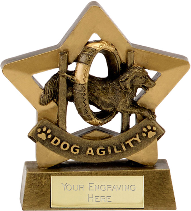 "Antique Gold Resin Star Dog Agility Trophy 14cm (5.5"")"