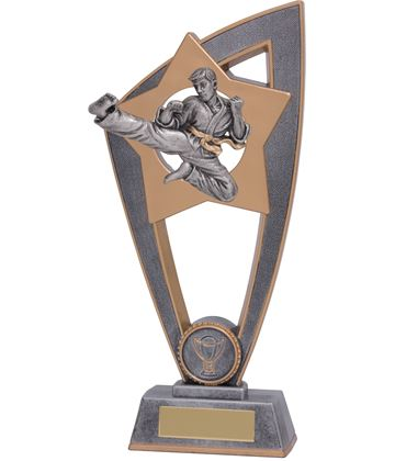 "Karate Star Blast Trophy 23cm (9"")"
