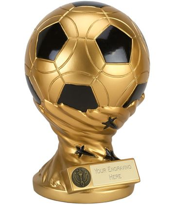 "Gold & Black Presentation Football Trophy 23cm (9"")"