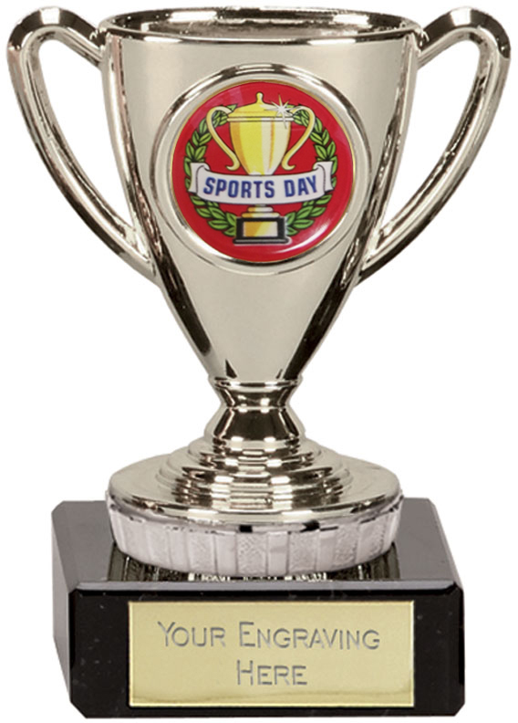 """Sports Day Silver Cup Trophy 10cm (4"""")"""