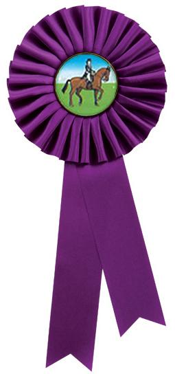 """Single Tier Purple Rosette 30cm (11.75"""")"""