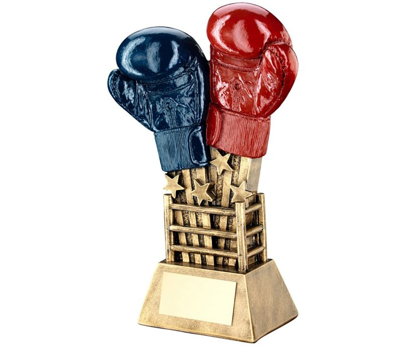 "Shooting Stars Boxing Glove Trophy Red & Blue 16.5cm (6.5"")"