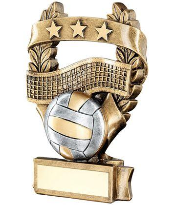 "Star Laurel Wreath Volleyball Trophy 12.5cm (5"")"