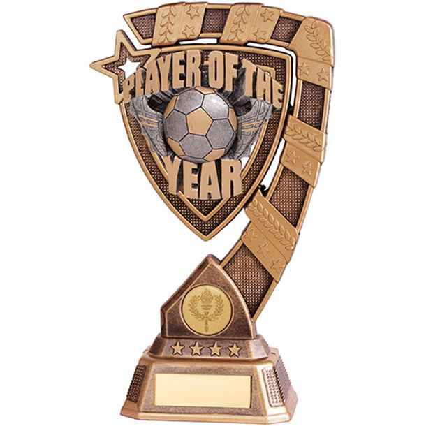"""Euphoria Player Of The Year Football Trophy 13cm (5"""")"""