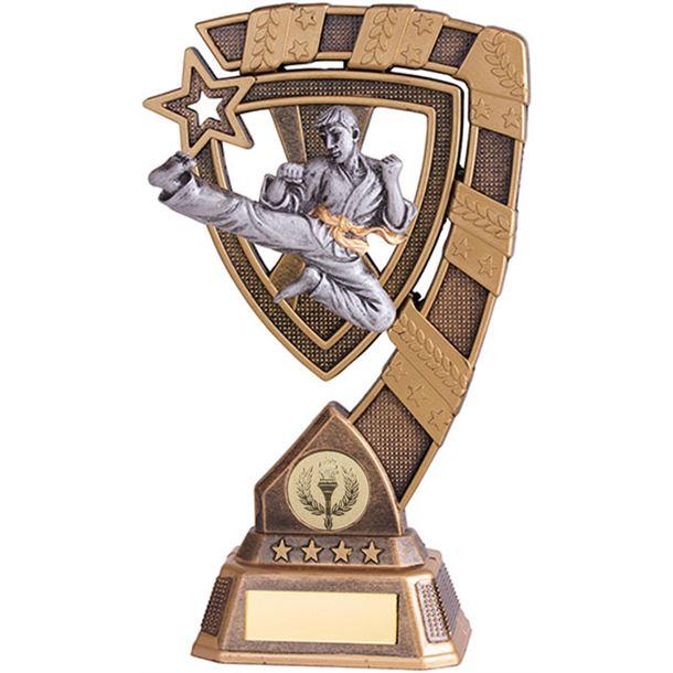 "Euphoria Karate Trophy 13cm (5"")"