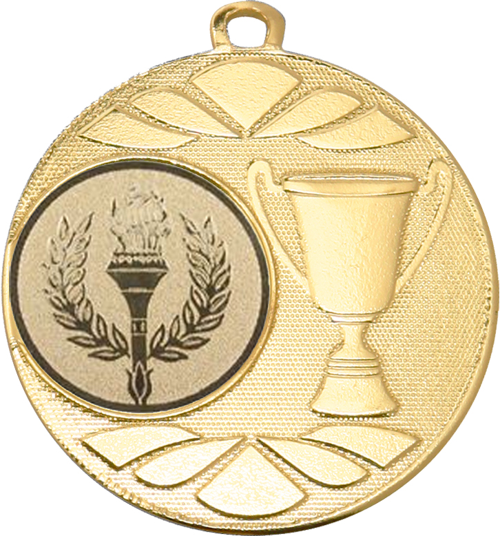 "Multi Award Trophy Cup Medal Gold 50mm (2"")"
