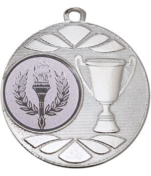 "Multi Award Trophy Cup Medal Silver 50mm (2"")"