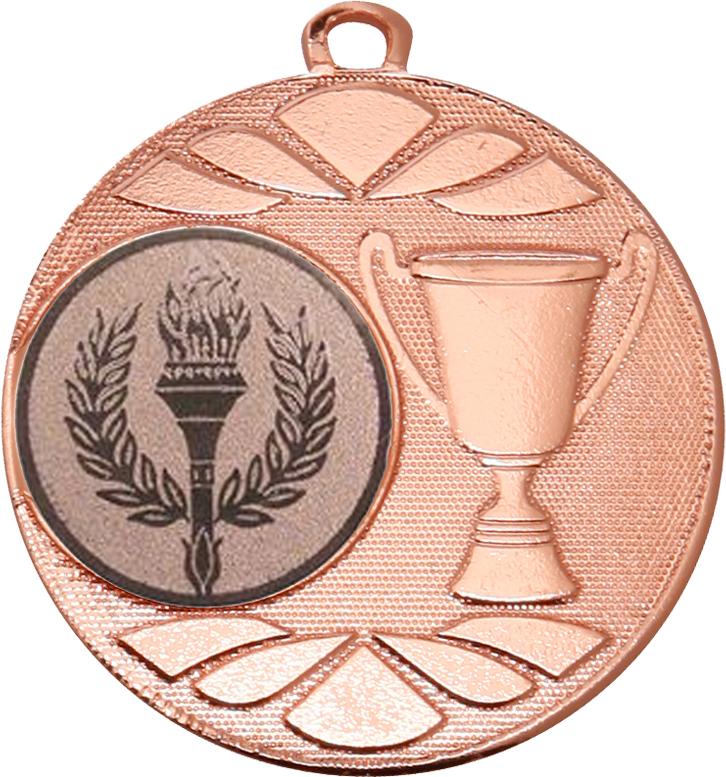 "Multi Award Trophy Cup Medal Bronze 50mm (2"")"