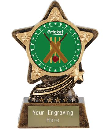 "Cricket Trophy by Infinity Stars 10cm (4"")"
