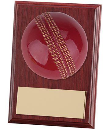 """Cricket Horizon Plaque Award 10cm (4"""")"""