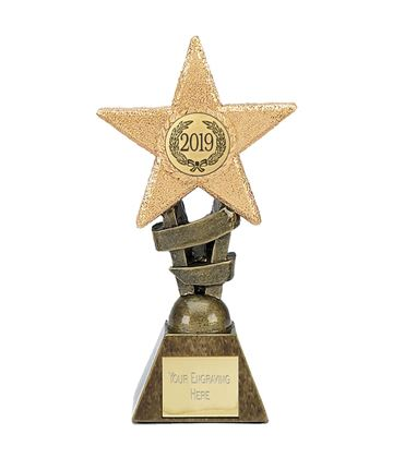"2019 Multi Award Star Trophy 12cm (4.75"")"