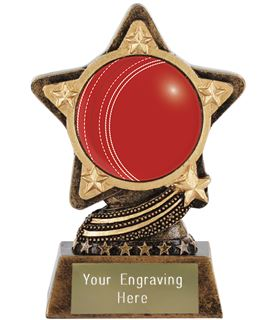 """Centre Cricket Ball Trophy by Infinity Stars 10cm (4"""")"""