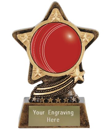 "Centre Cricket Ball Trophy by Infinity Stars 10cm (4"")"