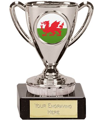 "Welsh Trophy Mini Cup Silver 10cm (4"")"