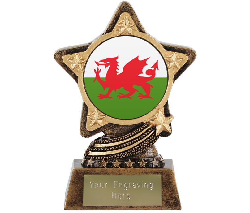 "Welsh Flag Trophy by Infinity Stars 10cm (4"")"